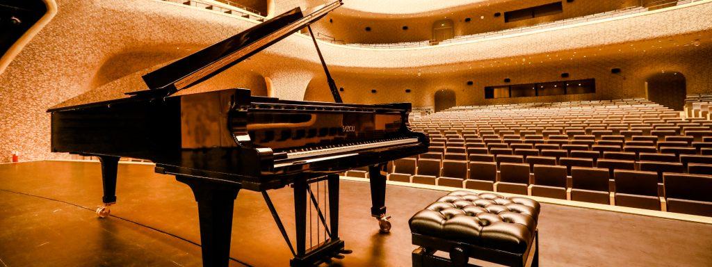 grand piano fazioli