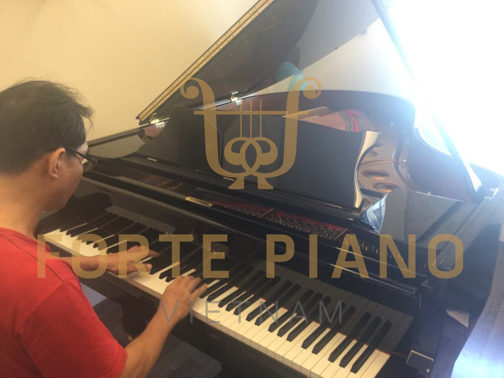 Steinway model O180 Cty Piano Forte Viet Nam