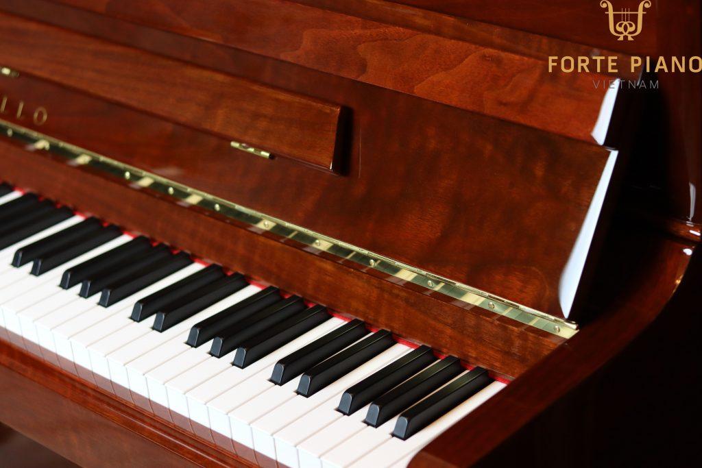 Đàn piano Apollo TAV121