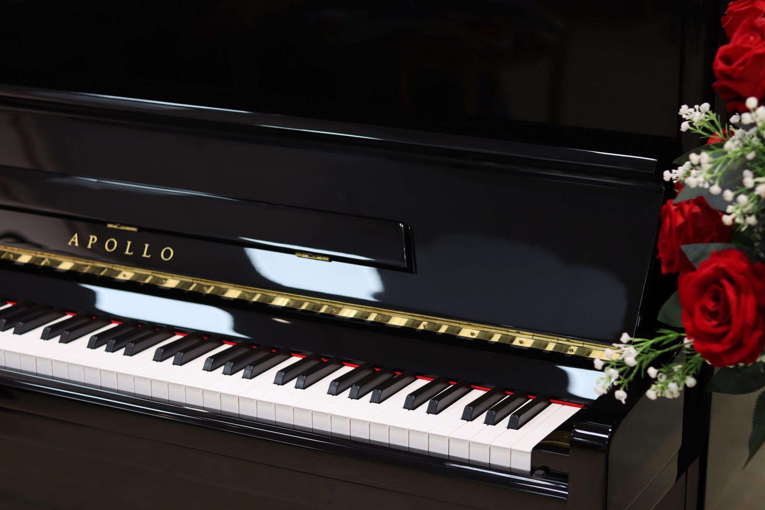piano apollo giá